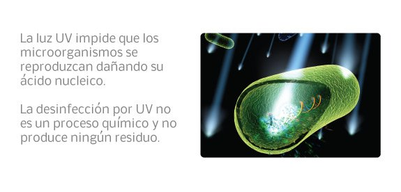 especifiacion como la luz uv impide que los microorganismos se reproduzcan, la desinfección por uv